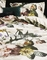 Essenza dekbedovertrek Fleur ecru detail