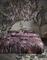 Essenza dekbedovertrek Diana lila sfeer